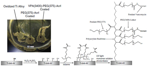 Inhibition of Staphylococcus epidermidis Biofilms using Polymerizable Vancomycin Derivatives