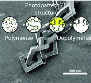 3D Photofixation Lithography in Diels–Alder Networks