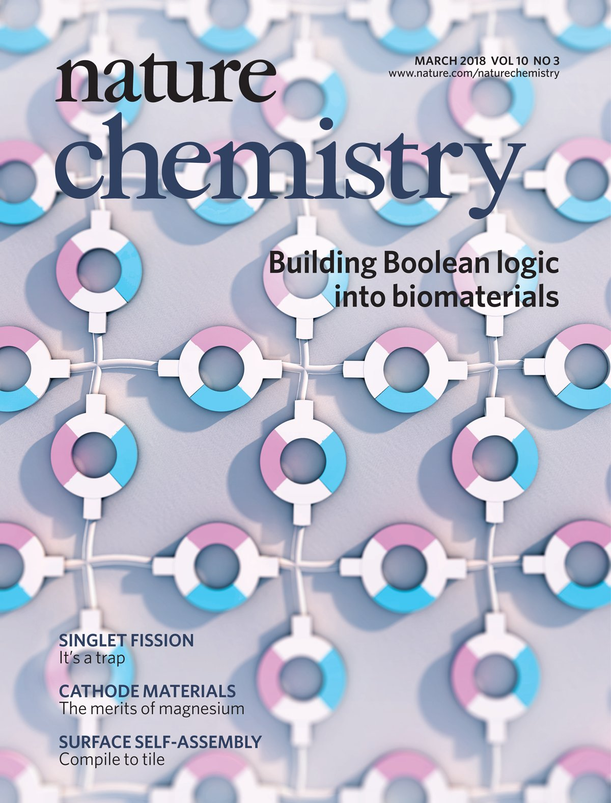 Badeau 2018 Nature Chemistry Cover