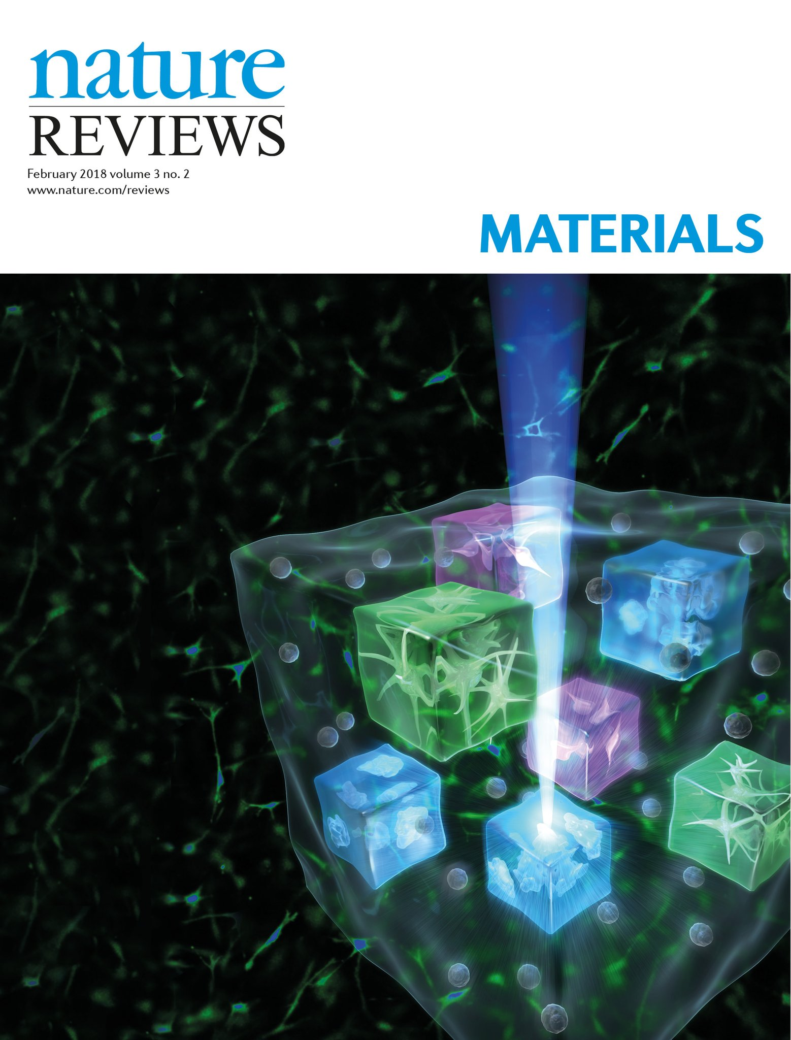 Ruskowitz 2018 Nature Revies Materials Cover